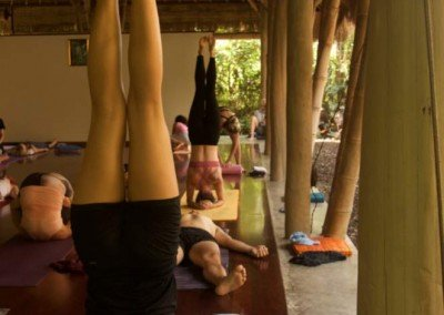 Ashtanga-yoga-bali_DSC3437