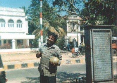 Coconuts in Mysore