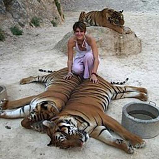 Shanti Carlisi with Tigers